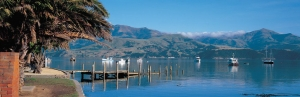 Akaroa-Harbour-View